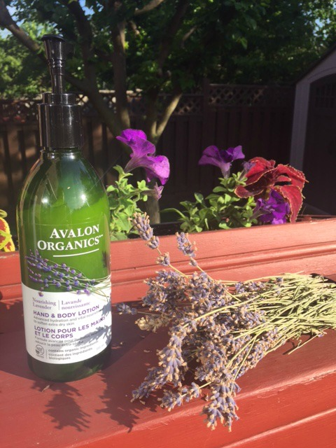 Soothe and Relax with Organic French Lavender | Toronto Beauty Reviews
