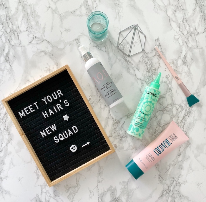 Meet Your Hair's New Squad | Toronto Beauty Reviews